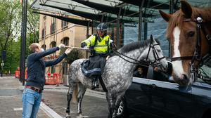 Police horses arrive at a free drive-through for the emergency services at The Berkeley Hotel in Knightsbridge, London (Aaron Chown/PA Wire)