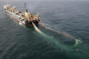 The world's second-largest factory fishing trawler, the Lithuanian FV Margiris (Greenpeace/PA)