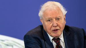 Sir David Attenborough is backing a call for a moratorium on dep sea mining (Chris J Ratcliffe/PA)