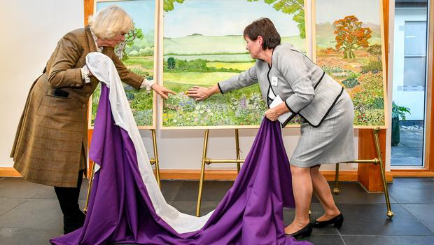 The Duchess of Cornwall, is helped by Prospect chief executive Irene Watkins to unveil a huge embroidered scene (Ben Birchall/PA)