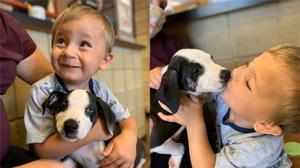 Bentley with Lacey the puppy, who has a cleft lip (Jackson County Animal Shelter)