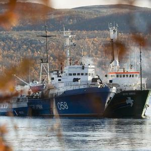 Greenpeace ship the Arctic Sunrise, right, is anchored side by side with a Russian coast guard ship in the Kolskii gulf, near Murmansk, Russia (AP/Greenpeace)