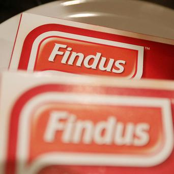Testing on Findus beef lasagne found some of the ready meals may have contained up to 100% horse meat, the Food Standards Agency said