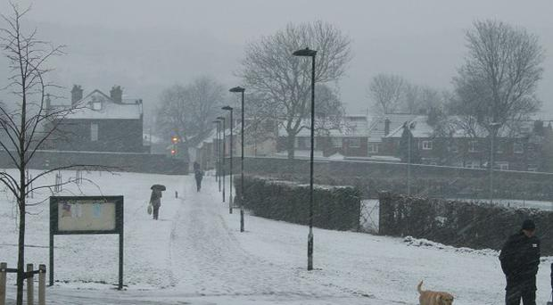 People struggle through the snow while walking their dog in Sheffield