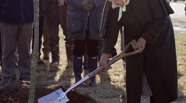 The Queen plants a tree in the Diamond Jubilee Wood on the Sandringham Estate in Norfolk to mark her Diamond Jubilee