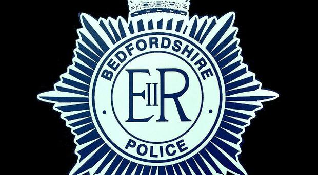 Bedfordshire Police are investigating after a football fan was stabbed