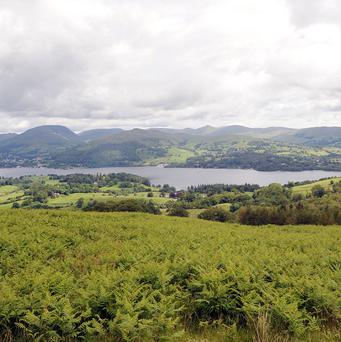 Police are investigating the deaths of a 36-year-old woman and 10-year-old girl in the Lake District
