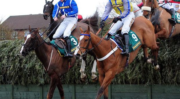 This year's Grand National is the only major sporting event of the weekend