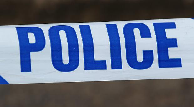 Two children and an adult woman have been found dead in north-west London