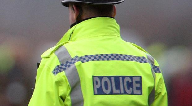 Cumbria Police said the dog was placed in kennels pending a joint investigation with social services