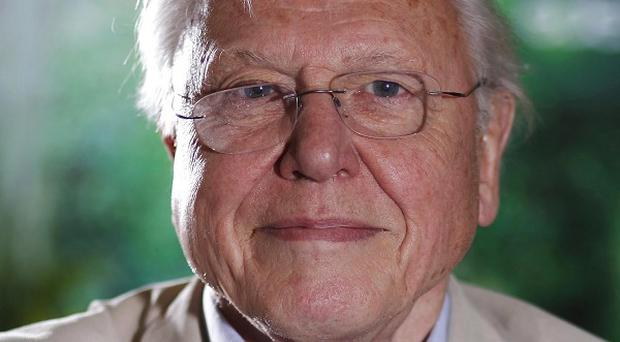 Sir David Attenborough has been forced to cancel a sell-out speaking tour of Australia in order to have pacemaker surgery