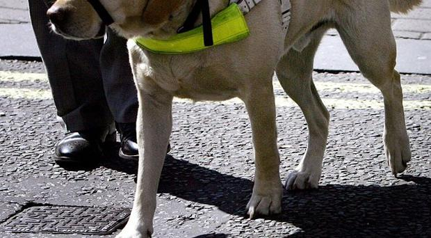 The proposed Anti-Social Behaviour, Crime and Policing Bill would make an attack on an assistance dog an aggravated offence