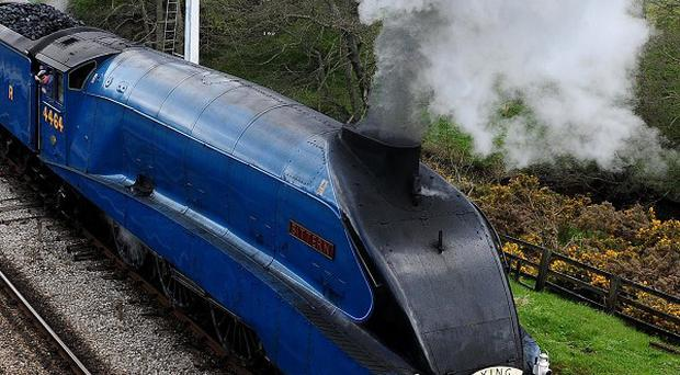 Bittern is expected to hit 90mph en-route from London to York