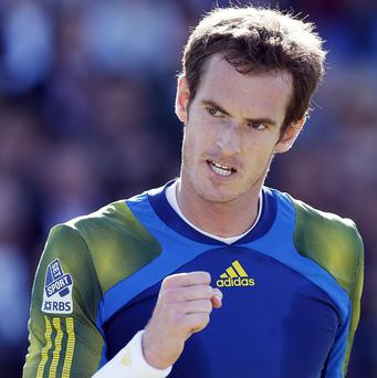Andy Murray is playing 6ft 8in Jerzy Janowicz in his Wimbledon semi-final