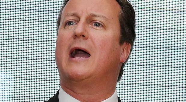 David Cameron wants to 'give the British people their say on Europe'