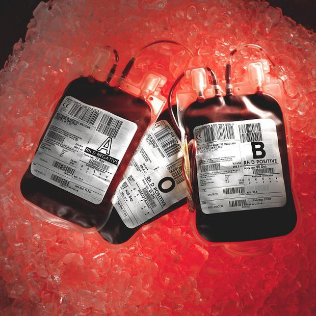 Bain Capital is understood to be buying an 80 per cent stake in Government-owned blood products company Plasma Resources UK