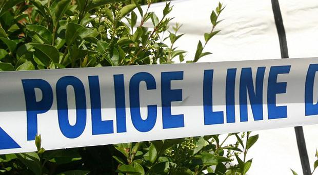 A teenager has been arrested over a death in a Surrey park