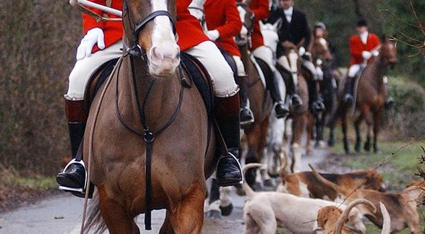 MPs and campaigners are pushing the Government to scrap the ban on using more than two dogs to flush out foxes so they can be shot