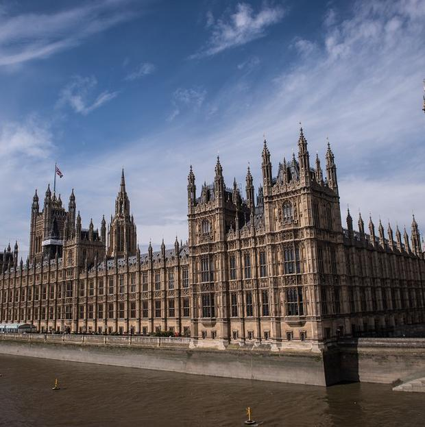 Senior MPs have slammed proposed curbs on expenses.