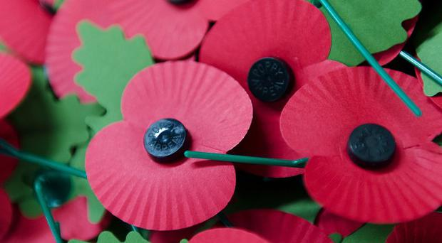 Ted Cooke's poppy action is backed by the Equality Commission