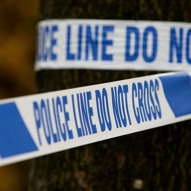 Police were called to Sherfield Avenue, Leigh Park, Hampshire, where body of a woman in her 80s was found