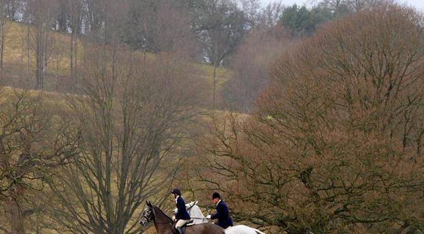 Most people support the ban on foxhunting, according to a poll commissioned by an animal welfare charity