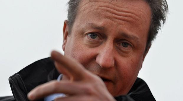 David Cameron promised a Tory government would protect the basic state pension from cuts until at least 2020