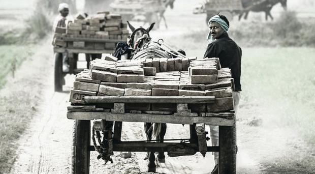 Working mules and their drivers depart from a brick kiln close to Aligarh, a city near Delhi, December 2012