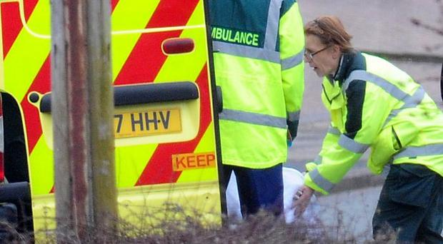 A badly injured elderly woman was hospitalised after a tree fell on a car in Birmingham