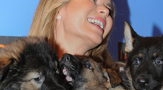Britain's Got Talent judge Amanda Holden visited Crufts, and cuddled up to three police dog puppies