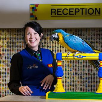 Charlie the parrot chats with receptionist Amber Dixon at the Legoland Windsor Resort Hotel in Berkshire.