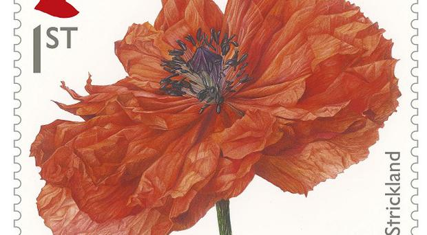 The new first class stamp to commemorate the First World War, showing a painting of a Poppy by Fiona Strickland. (Royal Mail/PA)