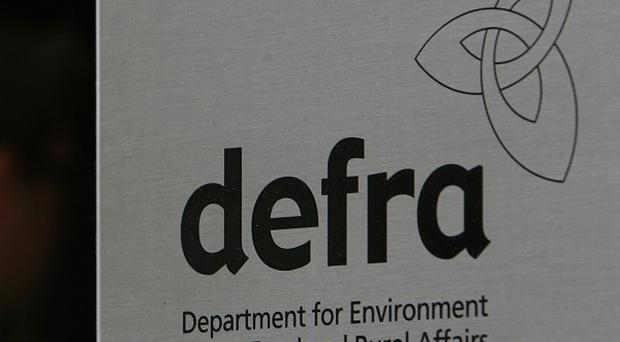 The Department for Environment, Food and Rural Affairs has backed a trial of GM plants