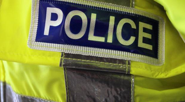 Police are investigating after a woman was stabbed to death in a domestic incident