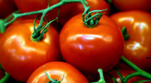 Men who eat more than 10 portions of tomato products, including baked beans, each week have an 18% lower risk of developing prostate cancer, research suggests