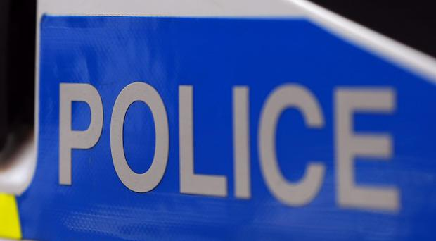 A 15-month-old girl has died after an accident involving a car reportedly driven by her father