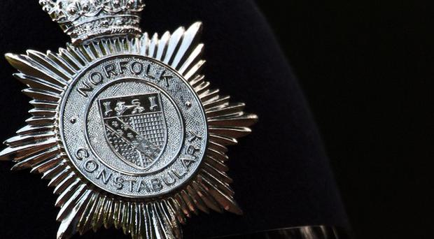 Police in Norfolk are investigating the possibility that a woman who died in a collision was pushed into the road