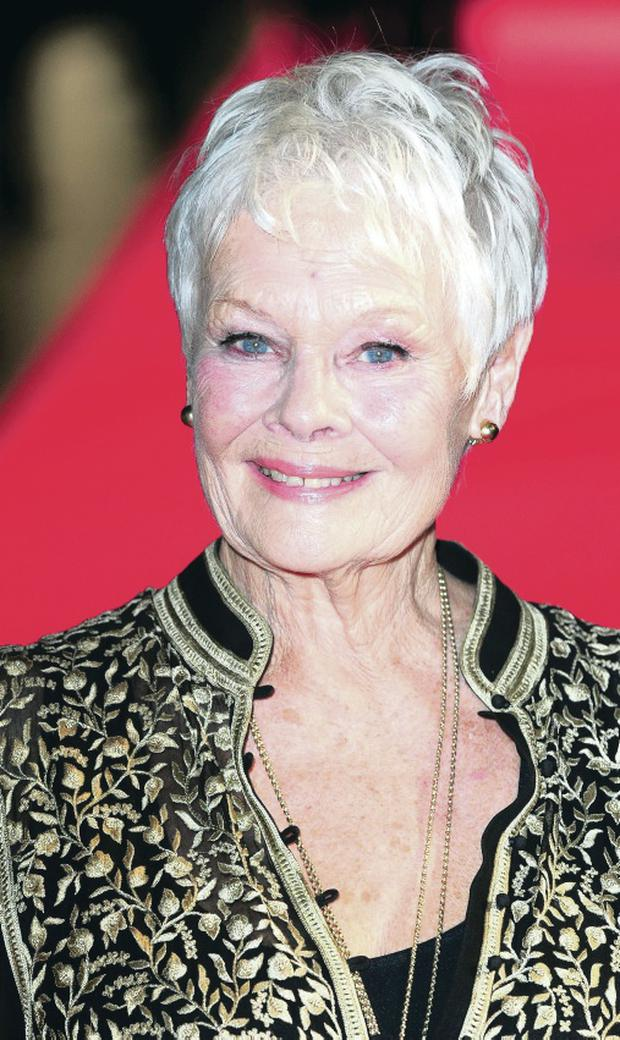 Sir Bruce Forsyth and Dame Judi Dench signed an open letter campaigning for a no vote