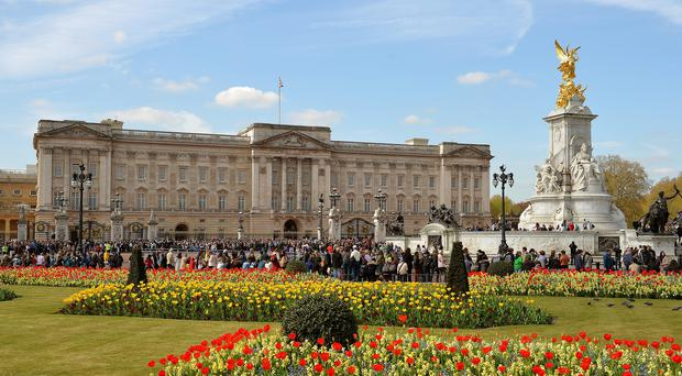 A soldier who apparently did silly walks while guarding Buckingham Palace is being investigated