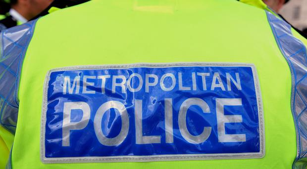 Police have arrested a man after a woman was beheaded in a garden in north London