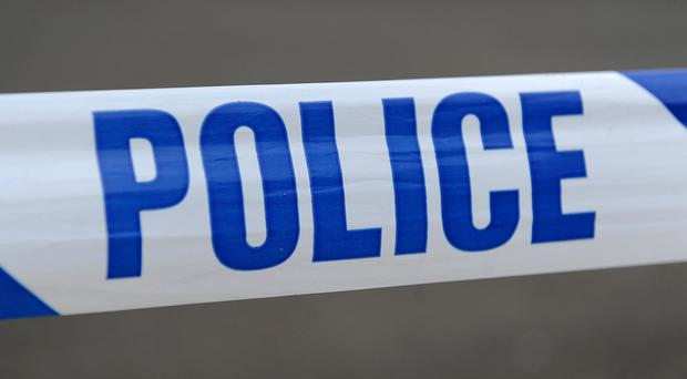 A 48-year-old local man has been arrested on suspicion of theft from heritage and protected sites