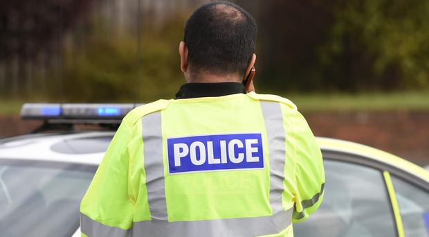 A former chief inspector has said police