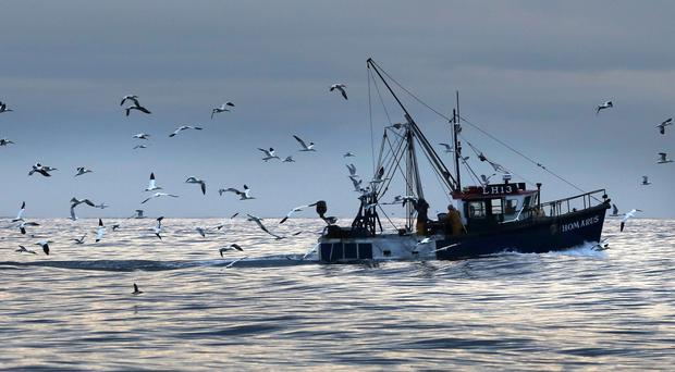 Labour MP Austin Mitchell called on ministers to 'go and fight and protect' the UK's interests at a EU Fisheries Council meeting next week