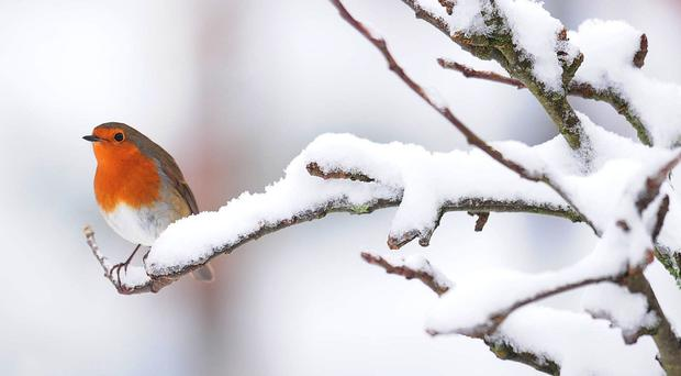 Could UK see snow on Christmas Day?