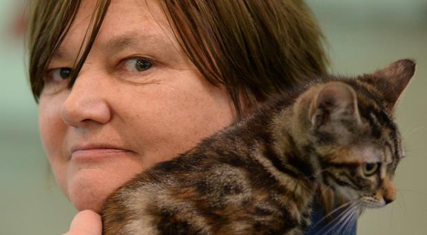 Cat rehomer Ros Davies at Battersea Dogs and Cats Home in London
