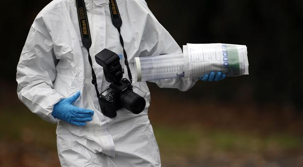 Forensics services were put under the spotlight by the National Audit Office