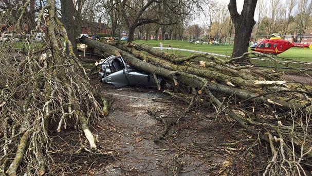 The scene after a tree brought down by strong winds crushed a car in Birmingham (PA/West Midlands Ambulance Service)