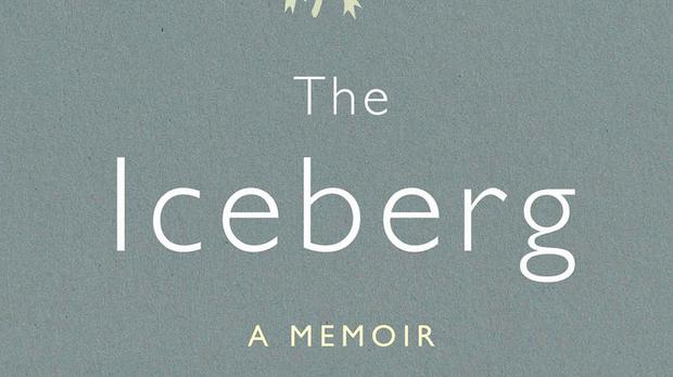 The Iceberg by Marion Coutts has won the £30,000 Wellcome Prize (Wellcome/PA)