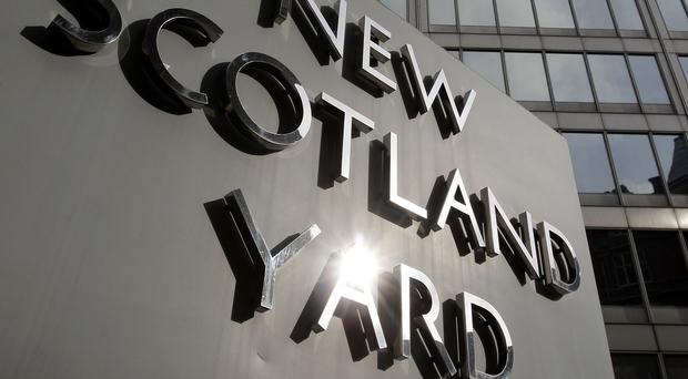 Scotland Yard said it had taken steps to ensure the safety of the 'vulnerable young girl'.