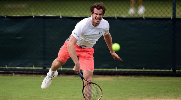 Andy Murray is aiming to secure his second Wimbledon title